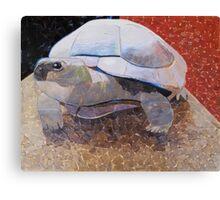 """Tortoise 2"" Canvas Print"