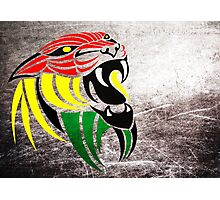 Lion Reggae Colors Cool T Shirts Prints and Stickers Photographic Print