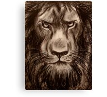 Lion - Charcoal drawing of a Lion Canvas Print