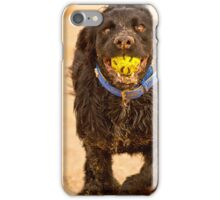 Cocker on beach iPhone Case/Skin