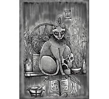 witch cat Photographic Print