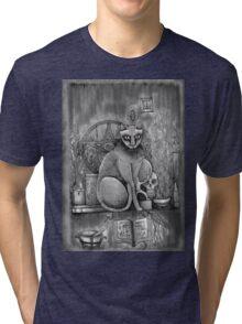 witch cat Tri-blend T-Shirt