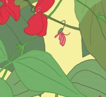 Scarlet runner beans pattern 1 Sticker