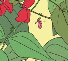 Scarlet runner beans pattern 2 Sticker