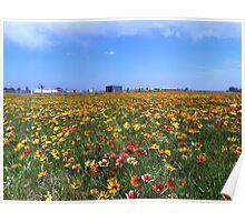 Flowerscape Poster