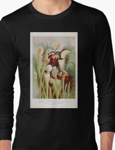 Southern wild flowers and trees together with shrubs vines Alice Lounsberry 1901 061 Trumpets Pitcher Plant Long Sleeve T-Shirt