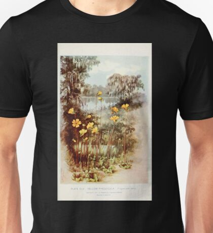 Southern wild flowers and trees together with shrubs vines Alice Lounsberry 1901 154 Yellow Pinguicula Unisex T-Shirt