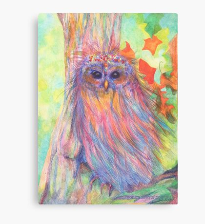 Colourful Owl in a tree Canvas Print
