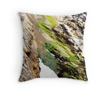 seaweed rocks and the ocean Throw Pillow
