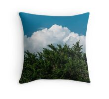 Nature in Layers Throw Pillow