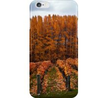 Queenstown Vineyard iPhone Case/Skin