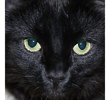 Glowing Eyes Photographic Print