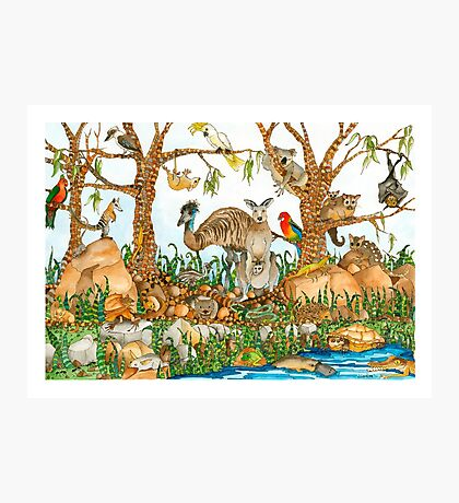 Australian Menagerie Photographic Print