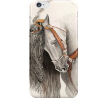 Andalusian Horse Painting by Anthea M iPhone Case/Skin