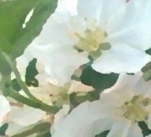 Painted White Petals Sticker