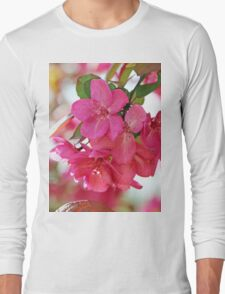 A branch of Crabapple flowers Long Sleeve T-Shirt