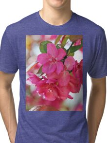 A branch of Crabapple flowers Tri-blend T-Shirt