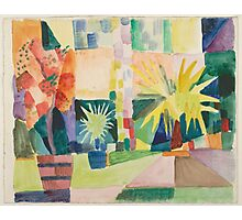 Vintage famous art - August Macke - Garden On Lake Thun (Pomegranate Tree And Palm In The Garden) Photographic Print