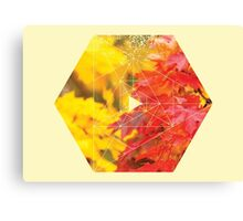 Nature and Geometry - Autumn Leaves Canvas Print
