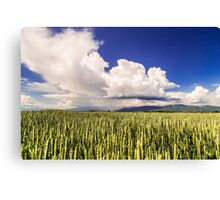 storm over the fields Canvas Print
