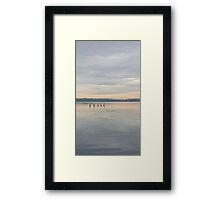 Pelican Shores Framed Print