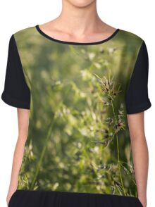 Field a blade of grass. Closeup. Chiffon Top
