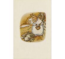 Vintage famous art - Beatrix Potter - Peter Rabbit, 1902 Photographic Print