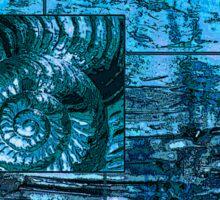 Evolution - Ammonite in Blue Sticker
