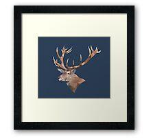 LP Deer Framed Print