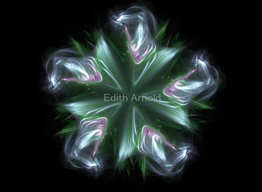 starflower by Edith Arnold