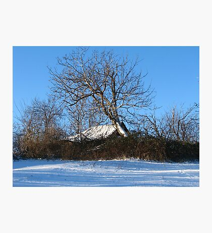 A Barn & Tree Romanian Winter scene Photographic Print