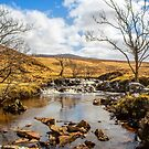 Moorland Falls by Dave Hare
