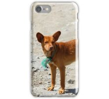 Brown Stray Dog on a Street iPhone Case/Skin