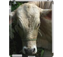 White Bull iPad Case/Skin