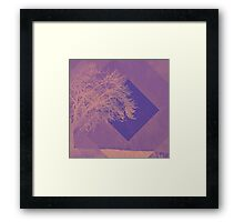 Two Tone Trees for Me Framed Print