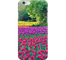 A Rainbow of Tulips iPhone Case/Skin