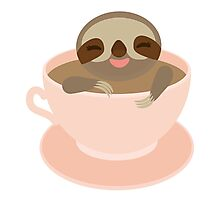 Sloth in a cup 3 Photographic Print