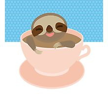 Sloth in a cup 2 Photographic Print