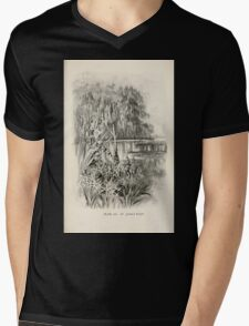 Southern wild flowers and trees together with shrubs vines Alice Lounsberry 1901 021 Saint John's River Mens V-Neck T-Shirt