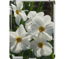 Sparkling, Fabulous White Narcissus with a Touch of Red iPad Case/Skin