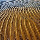 Sanddune.........Queensland by Imi Koetz