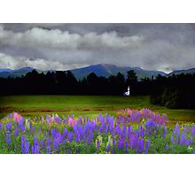 Chapel in the Lupine Mindscape Photographic Print
