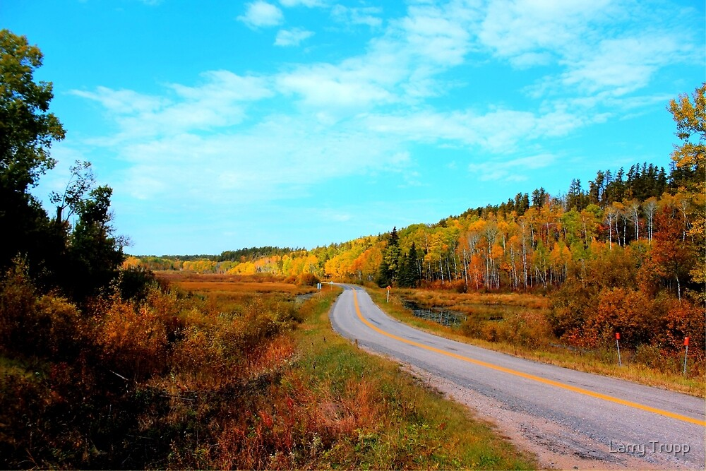 Whiteshell Provincial Park by Larry Trupp