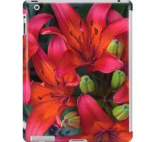 Spring Flower Series 45 iPad Case/Skin
