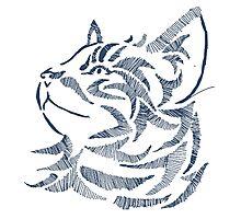 Cat Artwork Hand Drawn DigitalArt Photographic Print