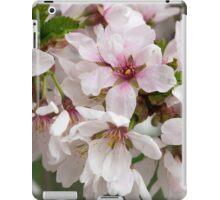 Spring Flower Series 48 iPad Case/Skin