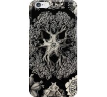 Historical nature art forms iPhone Case/Skin