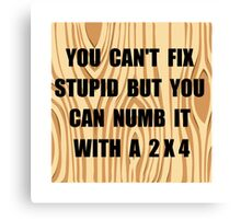 Numb Stupid Canvas Print