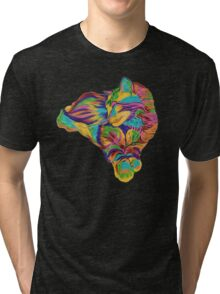 Psychedelic Max Tri-blend T-Shirt