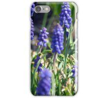 Spring Flower Series 15 iPhone Case/Skin